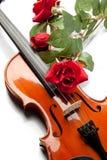 różany skrzypce Zdjęcia Royalty Free