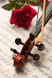 różany skrzypce Obraz Royalty Free