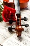 różany skrzypce Zdjęcie Stock