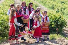 Różany zrywanie festiwal Zdjęcia Stock