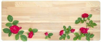 Róże na drewnianym tle Fotografia Royalty Free