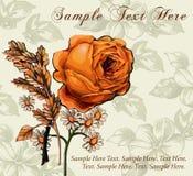 Róże. Rumianki. Kwiaty. Kartka z pozdrowieniami. Obrazy Royalty Free