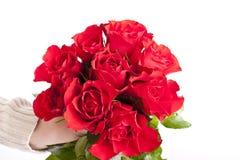 róże ty Obraz Royalty Free