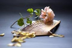 Róże w Hiszpania fotografia stock