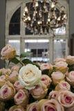 Róże w starym budynku Obrazy Royalty Free