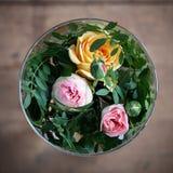 Róże w szklanej wazie Zdjęcie Royalty Free