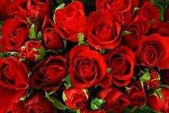 róże w tle Zdjęcia Royalty Free