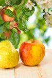 Różne owoc na stole Zdjęcia Royalty Free