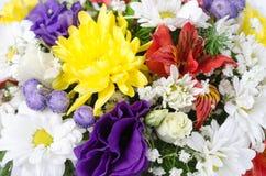 różni bukietów kwiaty Zdjęcia Stock