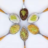 różni groats Zdjęcie Royalty Free