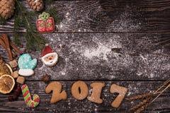 Różni imbirowi ciastka 2017 rok Zdjęcie Stock