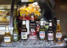 Różni popularni piwa Zdjęcia Royalty Free