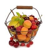 Różnorodna owoc w koszu Obrazy Stock