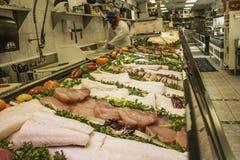 Różnorodna ryba w rybim rynku Fotografia Royalty Free