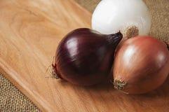 Różnorodne cebule na desce grabije na tle, burlap Obrazy Royalty Free