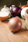 Różnorodne cebule na desce grabije na tle, burlap Fotografia Stock