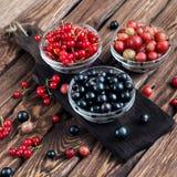 Różnorodne sezonowe jagody Obrazy Royalty Free