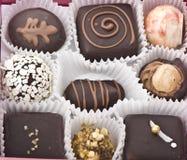 różnorodni czekoladowi pralines Zdjęcie Stock