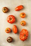 Różnorodni heirloom pomidory Zdjęcia Stock