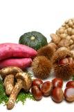 Różnorodni jesieni foods Obraz Stock