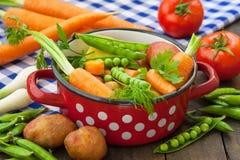 Różnorodni warzywa w garnku Fotografia Stock