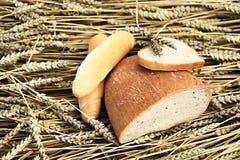 Różnorodny chleb na pszenicznym tle Obrazy Stock