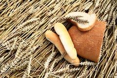 Różnorodny chleb na pszenicznym tle Fotografia Stock