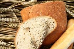 Różnorodny chleb na pszenicznym tle Zdjęcie Stock