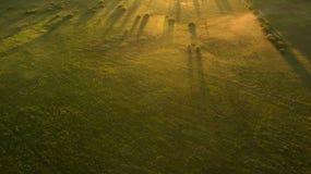 Różny wiejski pole widok od above Obrazy Royalty Free