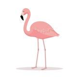 Różowa flaminga wektoru ilustracja Fotografia Royalty Free