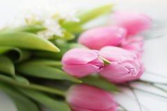 różowe bukietów tulipany Fotografia Royalty Free