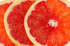 Różowi grapefruitowi plasterki Fotografia Stock