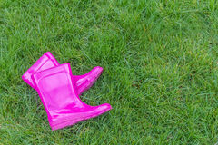 Różowi gumowi buty ogrodnictwo, buty/ Fotografia Stock