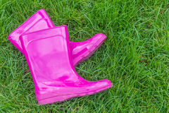Różowi gumowi buty ogrodnictwo, buty/ Zdjęcia Stock