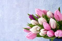 Różowi i biali tulipany w wazie bukiet kosmos kopii Zdjęcia Royalty Free