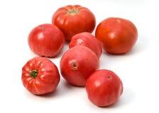różowi pomidory fotografia stock