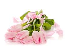 Różowi tulipany Zdjęcie Royalty Free