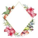 Różowy bukieta wildflower Ramowy rabatowy ornamentu kwadrat Fotografia Stock