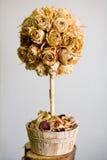różowy drzewo Zdjęcie Stock