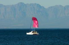 różowy jacht Obrazy Stock