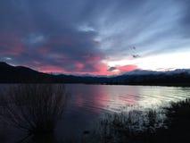 Różowy jezioro Zdjęcie Stock