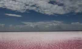 Różowy jezioro Zdjęcie Royalty Free