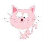różowy kota Zdjęcie Royalty Free