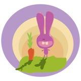 Różowy królik Zdjęcie Stock