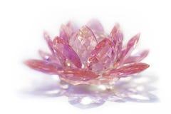 Różowy Krystaliczny Lotus Fotografia Stock