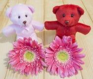Różowy kwiat 23 Zdjęcia Stock