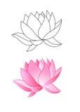różowy kwiat lotosu Zdjęcia Royalty Free