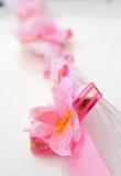 różowy kwiat pasowe Fotografia Royalty Free