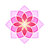 Różowy lotosowy kwiat Obraz Stock