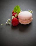 Różowy macaroon Zdjęcie Royalty Free